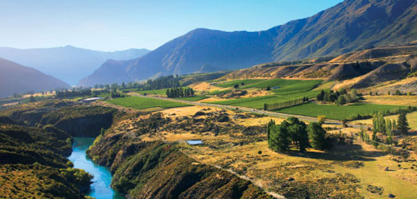 gibbston-new-zealand